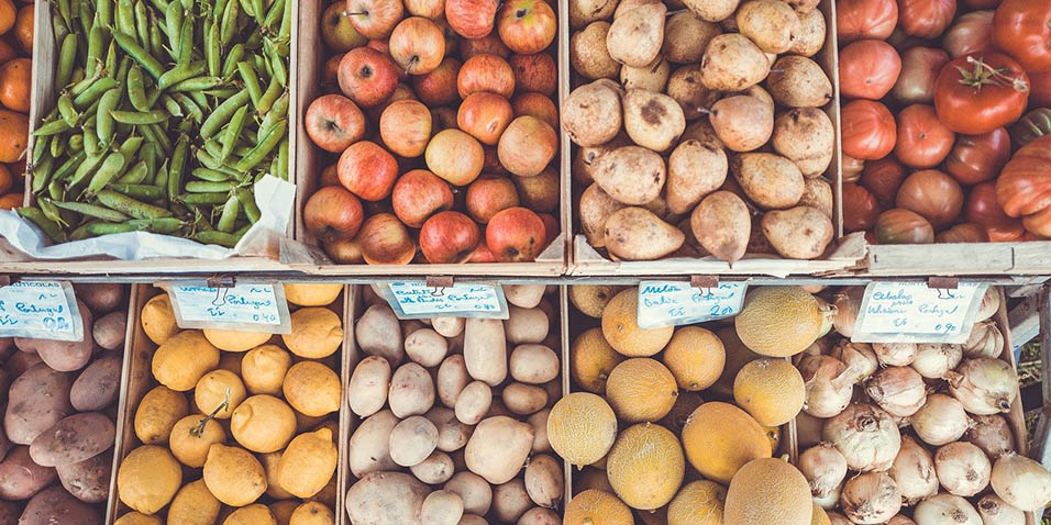 leto sadja in zelenjave