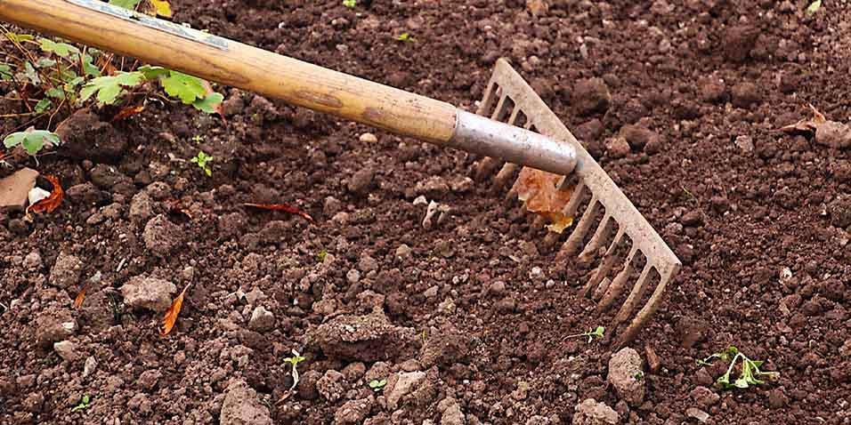 Obdelava zemlje za vrt